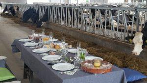 Locatie catering
